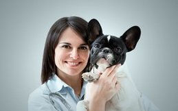 Dallas Veterinary | Dallas Senior Pet Wellness | NC | Crossroads Animal Hospital |