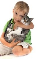 Dallas Veterinary | Dallas Vaccinations - Cats | NC | Crossroads Animal Hospital |
